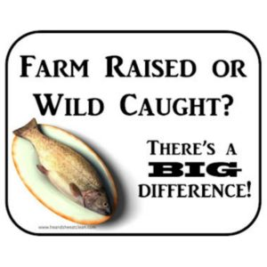 farm raised or wild caught with a fish