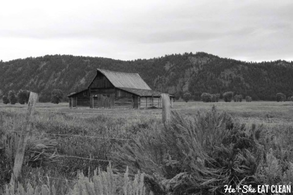 Mormon Row Barn in Grand Teton National Park