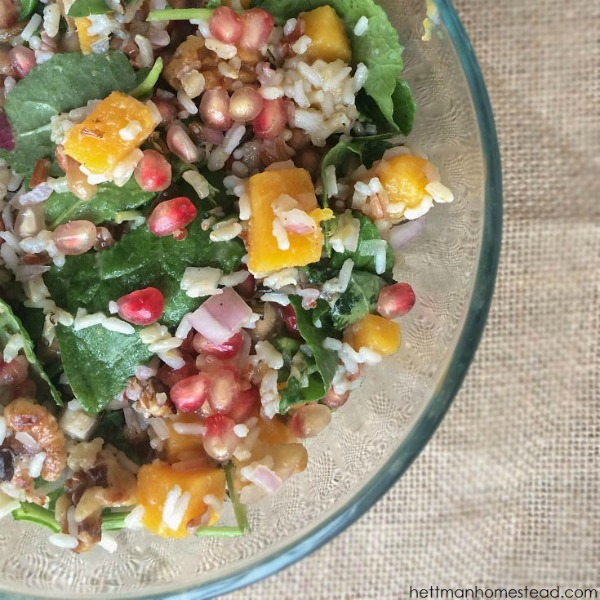 Pomegranate, Butternut Squash, & Wild Rice Power Salad
