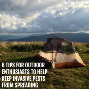 tent on top of a mountain with text that reads 6 Tips for Outdoor Enthusiasts to Help Keep Invasive Pests from Spreading