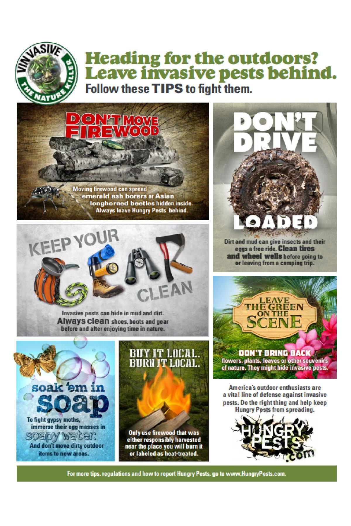 USDA Invasive Pests infographic
