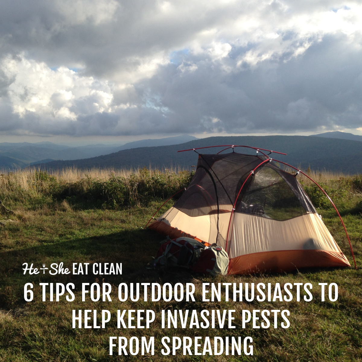 orange and cream tent on top of a mountain with sky and clouds in the background. text reads 6 Tips for Outdoor Enthusiasts to Help Keep Invasive Pests from Spreading
