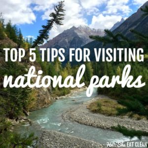mountain range with river running through it with text that reads top 5 tips for visiting national parks