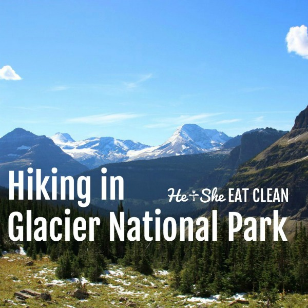 picture of green grass and mountains in the background text reads hiking in Glacier National Park