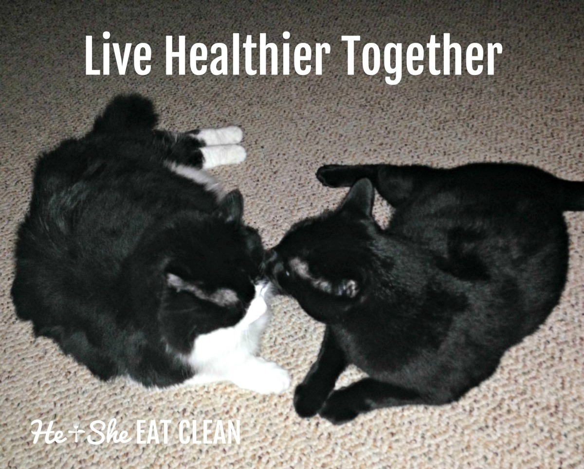 Live #HealthierTogether with Your Pets!
