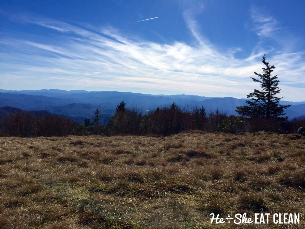 Hiking Andrews Bald in Great Smoky Mountains National Park | He and She Eat Clean