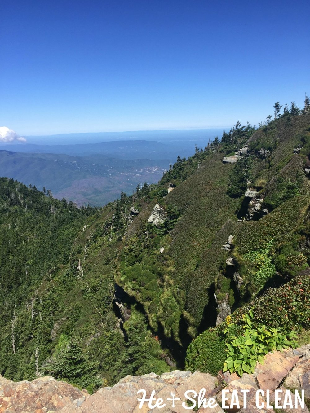 Climbing Mt LeConte in the Great Smoky Mountains National Park
