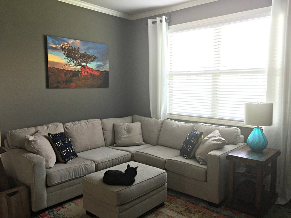 Living Room in Sherwin Williams Gauntlet Gray
