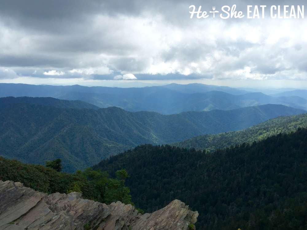 Top of Mt LeConte in Great Smoky Mountains National Park