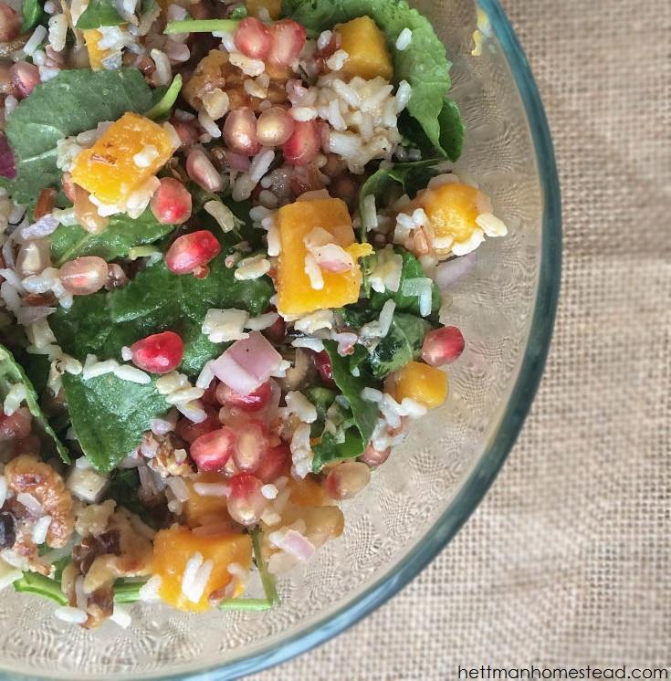 Pomegranate, Butternut Squash, & Wild Rice Power Salad | Hettman Homestead