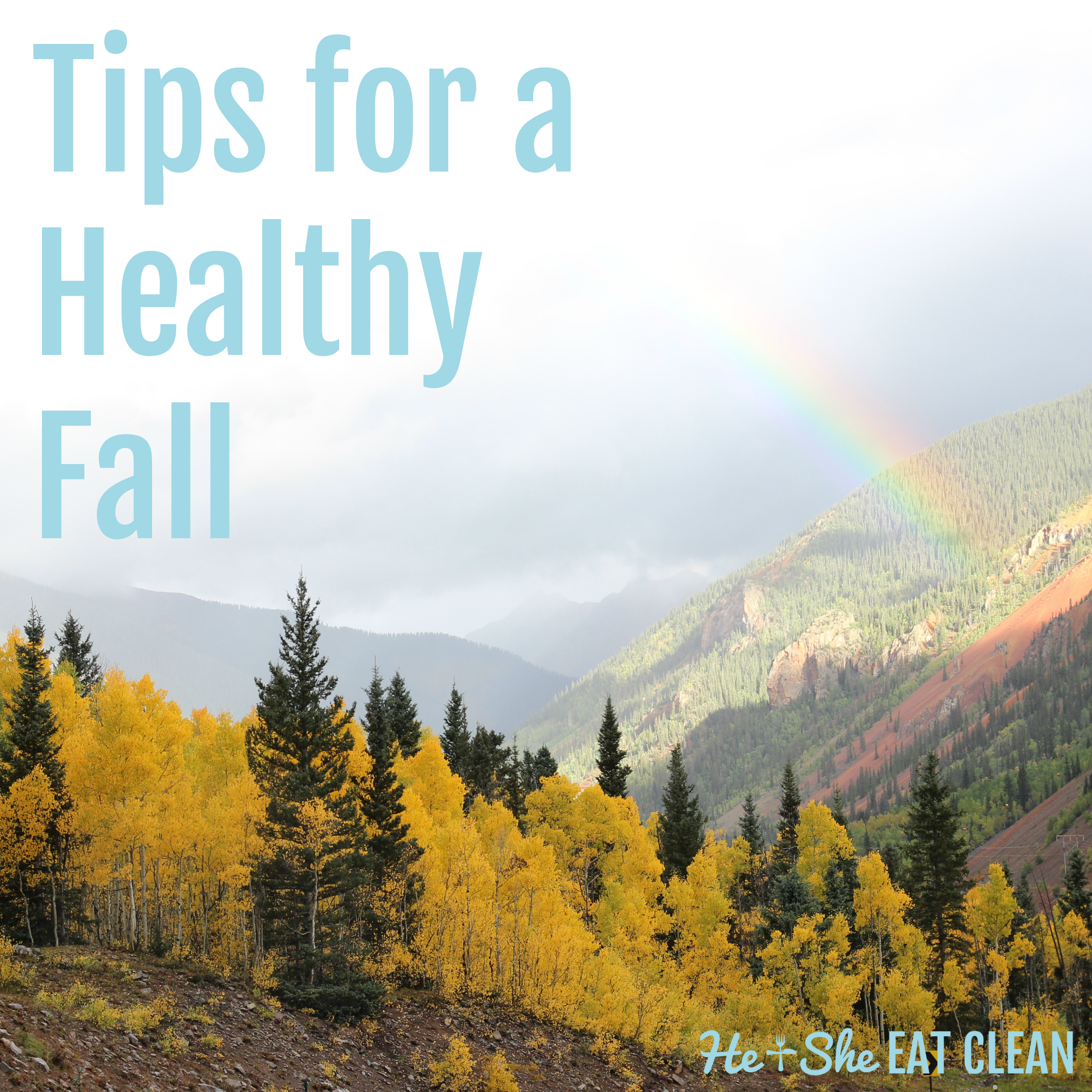 Tips for a Healthy Fall