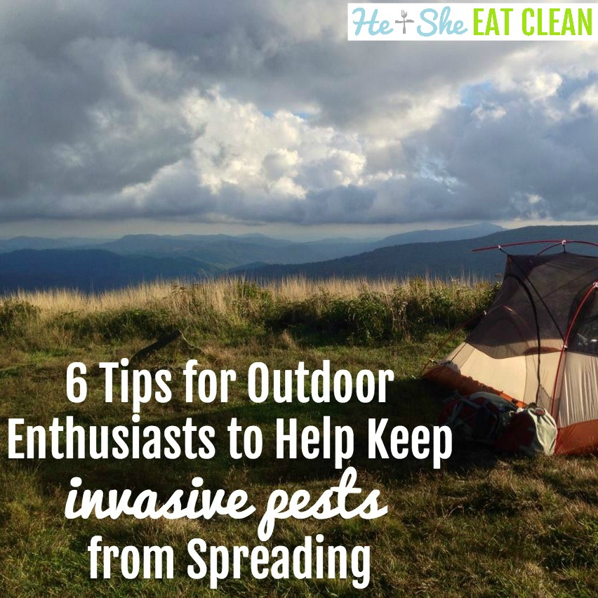 6 Tips for Outdoor Enthusiasts to Help Keep Invasive Pests from Spreading