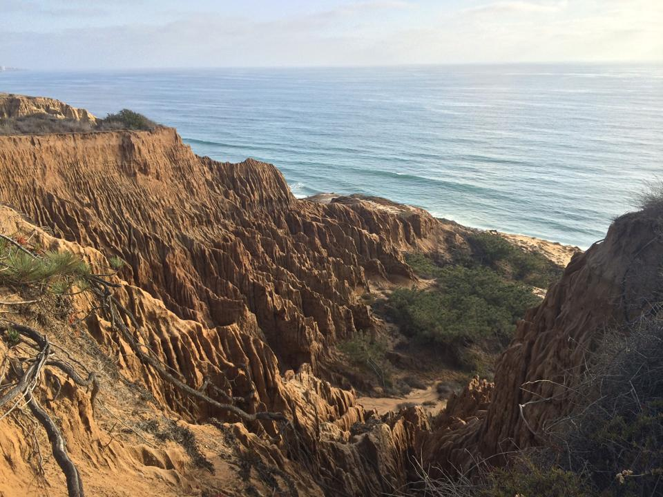 Hiking in Torrey Pines State Reserve | He and She Eat Clean
