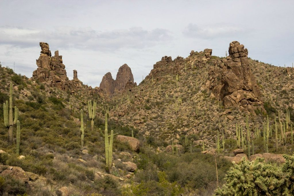 dessert picture in Arizona including rock formations and cacti