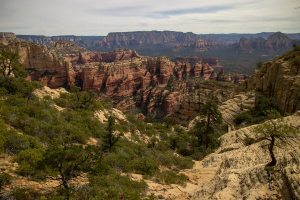 view of the red and white rocks of Sedona, Arizona