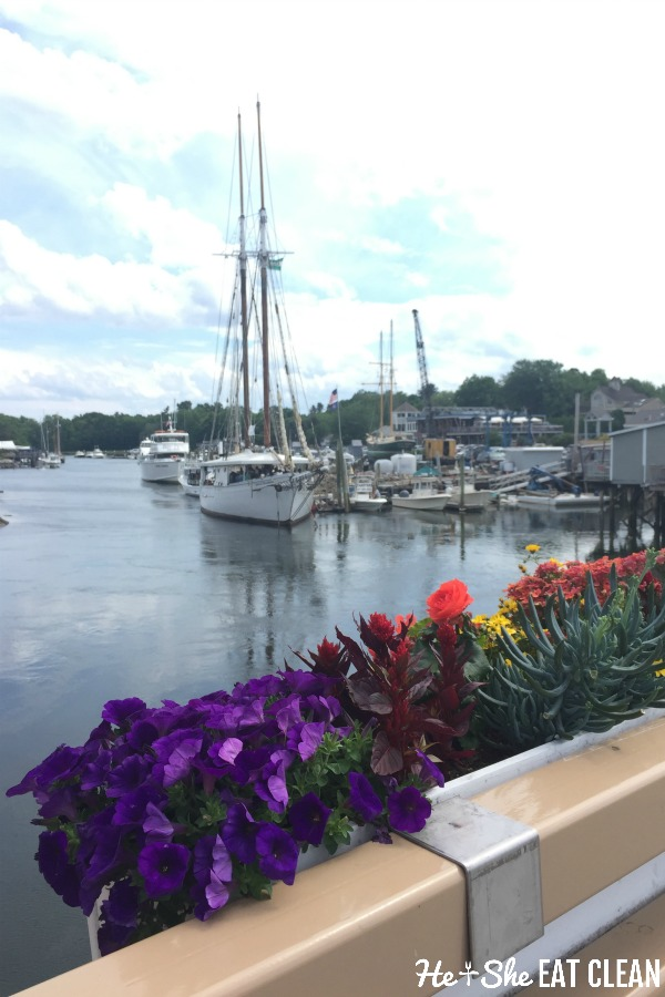 sailboats and flowers in Kennebunkport, Maine