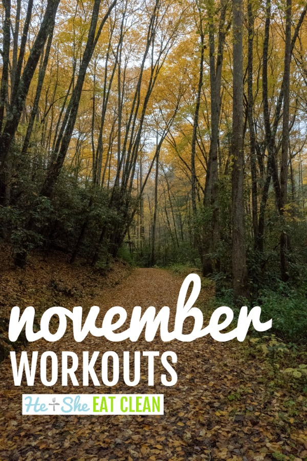 fall picture with november workouts as text