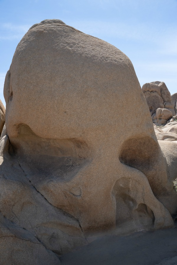 large boulder/rock that looks like a skull in Joshua Tree National Park