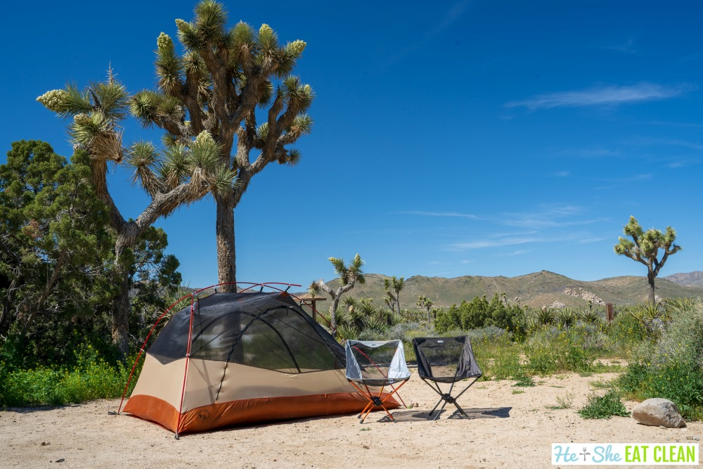 orange and black tent with two chairs next to it in the desert in front of a joshua tree