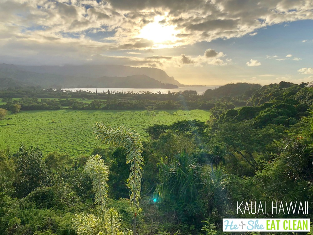 looking out over a lush green landscape with the ocean and mountains in the background in Kauai, Hawaii