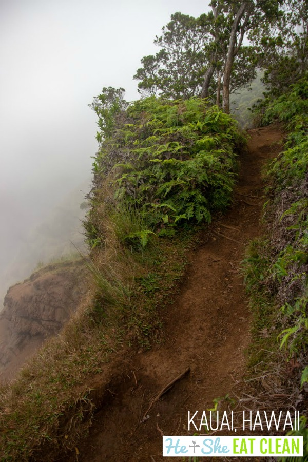 dirt trail going uphill with lush green landscaping along the Airplane trail in Kauai, Hawaii