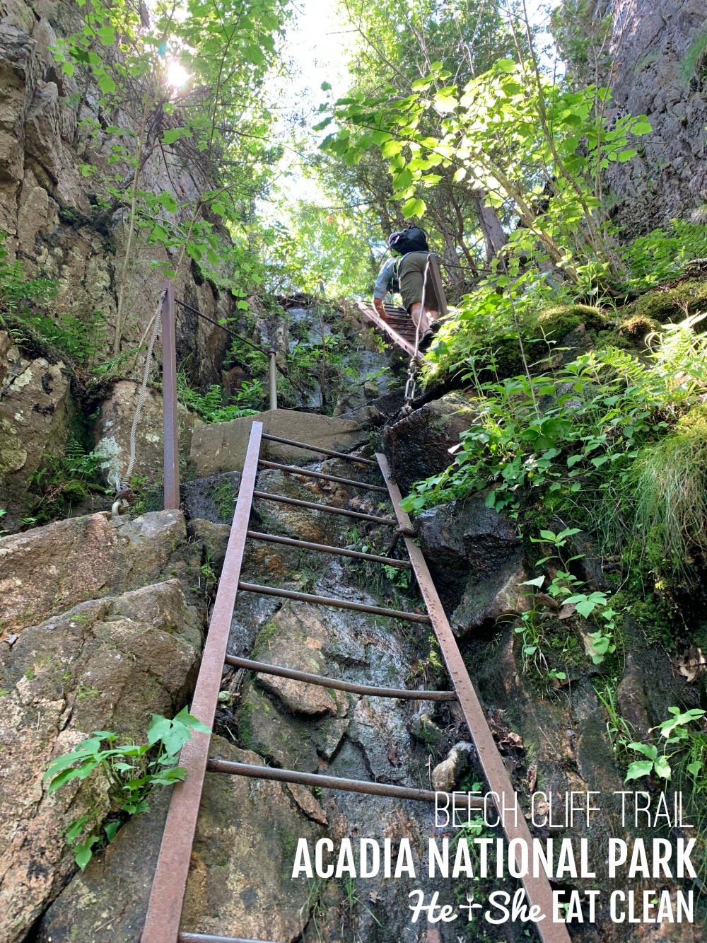 long ladders going up large rocks in order to hike Beech Cliff Trail in Acadia National Park