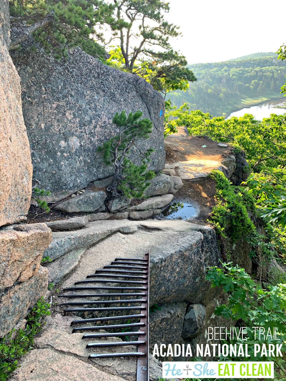 landscape photo of the Beehive Trail in Acadia National Park with a trail and ocean in the background