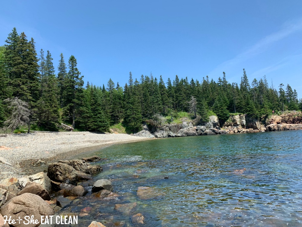 view of Little Hunters Beach in Acadia National park with trees surrounding the cliffs
